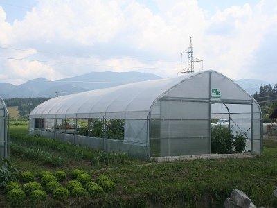 Izdelava rastlinjaka iz polikarbonata
