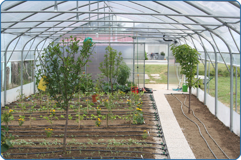 Kapljično zalivanje in namakanje vrta