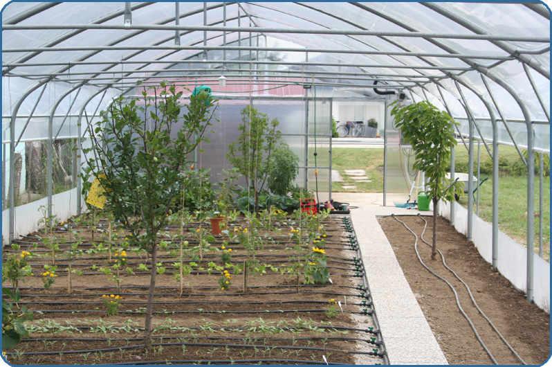 namakanje v rastlinjakih s PVC cevmi