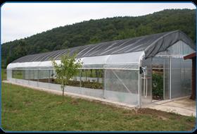folija in ostala oprema za rastlinjak